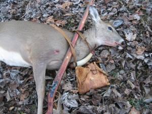 RidgeRunner's Deer