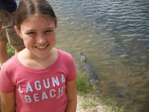Alligator No Fear