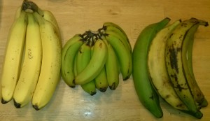 BANANAS, bananas, and plantains